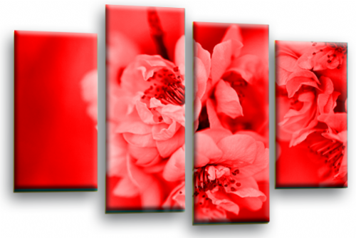Floral Flower Wall Art Picture Red Grey Spring Blossom Print Split